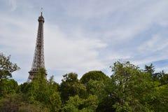 Wieża Eifla i Paryż drzewa Obrazy Stock