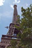 Wieża Eifla z gołębiem zdjęcia royalty free