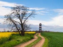 Wieża obserwacyjna monitorować ptaki i kraju Obrazy Royalty Free