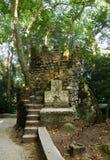Wieża obserwacyjna w Sintra lesie Portugalia Obrazy Royalty Free