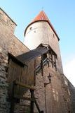wieża fotografia stock