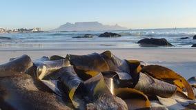 Wie die Sonne und die Lichtstrahlen weiter in Richtung zum Tafelberg untergeht Lizenzfreie Stockbilder
