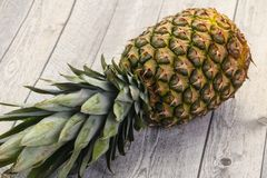 ?wie?e ananasowy dojrza?e fotografia stock