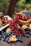 ?wie?e czarne jagody, rodzynki, czernicy, cranberries i malinki, zdjęcie royalty free