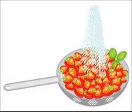 ?wie?e jagody w colander Dojrzałe soczyste truskawki myją pod wodą bieżącą Zbiera? owoc musz? by? je?? czyste ilustracji