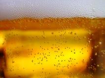 świeżego piwa. zdjęcia royalty free