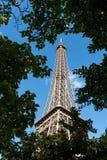 wieża eifla drzew widok Obraz Royalty Free