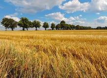 Wieś krajobraz zdjęcie royalty free