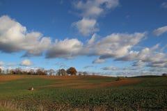 Wieś krajobraz, Latvia Fotografia Royalty Free