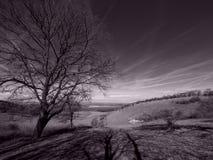 Wieś krajobraz w retro monochromu 2 Zdjęcia Royalty Free