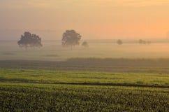 Wieś krajobraz w wczesnym poranku Obraz Royalty Free