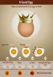 Wie man bestimmt, wenn ein Ei frisch ist Lizenzfreies Stockfoto
