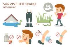 Wie man die Schlange überlebt Lizenzfreies Stockfoto
