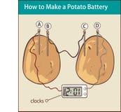 Wie man eine Kartoffelbatterie-Vektorillustration macht Stockfotos
