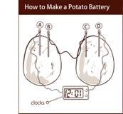 Wie man eine Kartoffelbatterie-Vektorillustration macht Stockbild