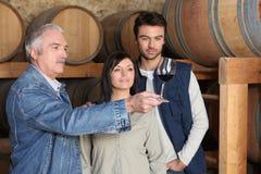Wie man Wein schmeckt Lizenzfreie Stockfotos