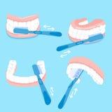 Wie man Zahn putzt lizenzfreie abbildung