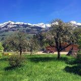 Wieś sceniczny widok Obraz Stock