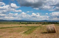 Wieś w lecie Zdjęcia Stock