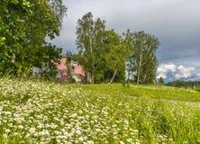 Wieś w Rosja Zdjęcia Stock