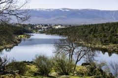 Wieś, widok Lozoya rzeka w Buitrago de Lozoya, Madryt, Obraz Royalty Free