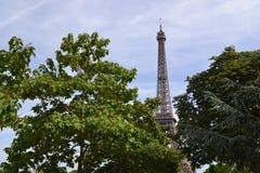 Wieży Eifla scena Zdjęcie Stock