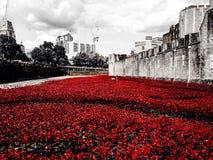 wieży londynu Zdjęcia Royalty Free
