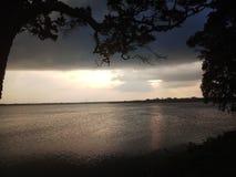Wieczór nieba synkliny ogromni drzewa Azja zdjęcie stock