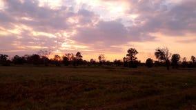 Wieczór łąki będą słońcem Fotografia Stock