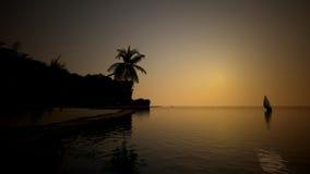 Wieczór brzeg w oceanie z drzewkami palmowymi Obrazy Stock
