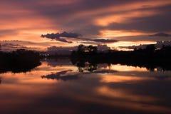 Wieczór czas na ryżowym polu w Tajlandia Obraz Royalty Free