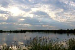 Wieczór natura jeziorem na letnim dniu obraz royalty free
