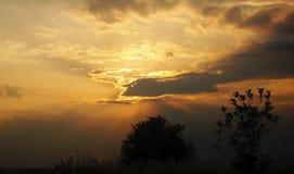 wieczór nieb nieba tekstura Obraz Royalty Free
