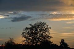 Wieczór niebo Zdjęcie Stock