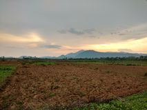 Wieczór niebo i rolnictwo ziemia Obraz Stock