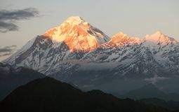 Wieczór panora góra Dhaulagiri, Nepal - Fotografia Royalty Free