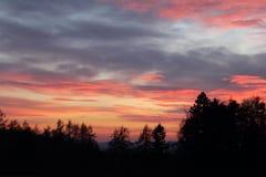 Wieczór piękno fotografia stock