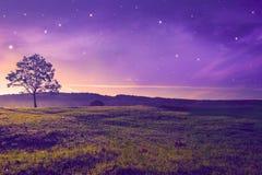 wieczór piękny krajobraz Obraz Royalty Free
