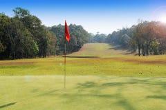Wieczór pole golfowe światła słonecznego jaśnienia puszek przy polem golfowym obraz royalty free