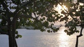 Wieczór przy plażą zbiory