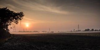 Wieczór ryż pole przy wsią Obrazy Royalty Free