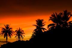 wieczór słońca zmierzch Obrazy Stock