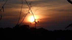 Wieczór słońce Bangladesz obrazy stock