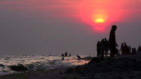 Wieczór tropikalny wybrzeże przy zmierzchem zbiory wideo