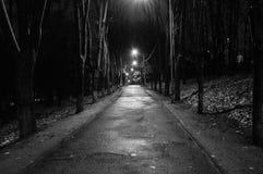 Wieczór w miasto parku fotografia royalty free