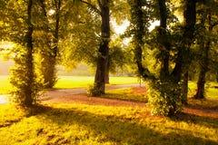 Wieczór w Raju Parku fotografia royalty free