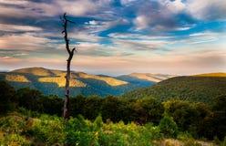Wieczór widok Appalachians od głównej ulicy Przegapia, alo obraz royalty free