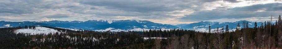 Wieczór zimy mroczny śnieg zakrywał halną grań Ukraina, Karpacki zdjęcie stock