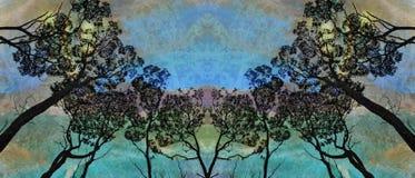 Wieczór zorza w lesie ilustracja wektor