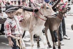 świeczka festiwal Thailand Fotografia Stock